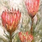 local art banhoek stellenbosch